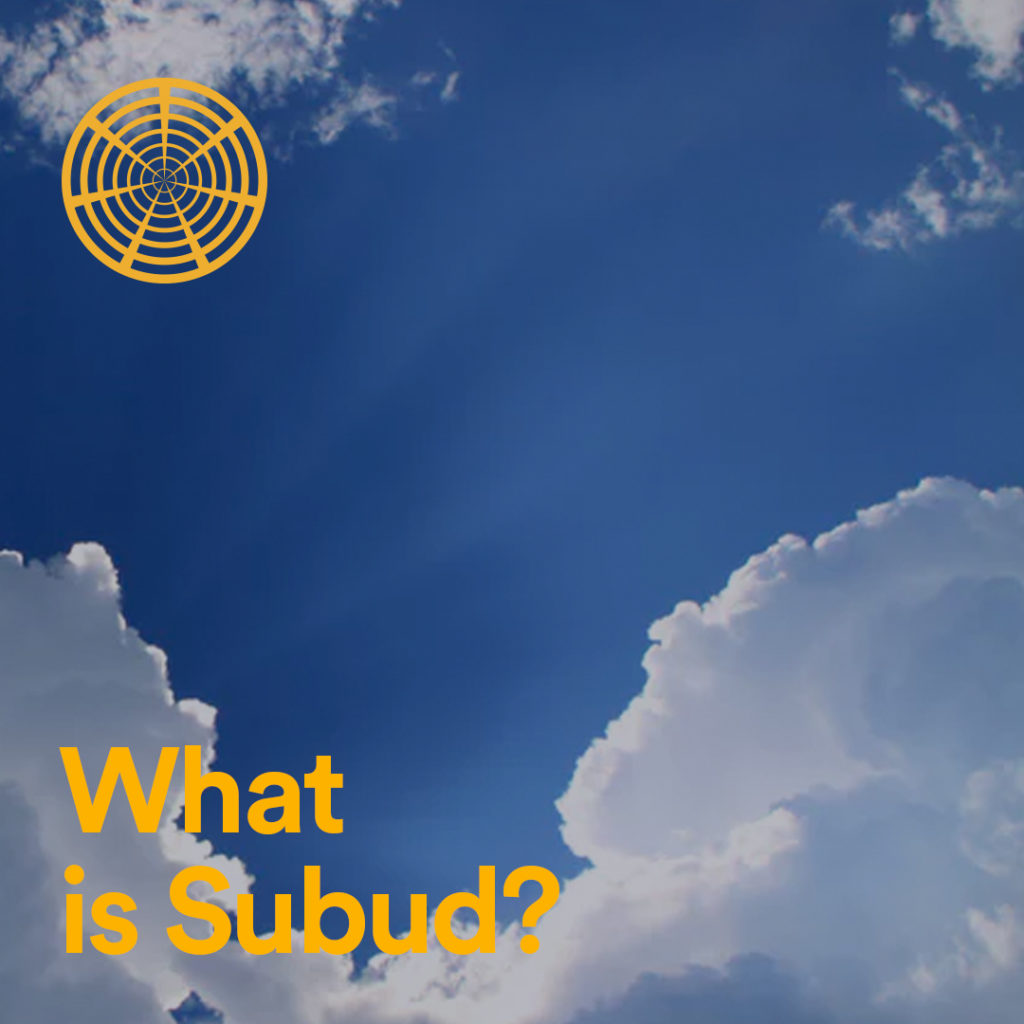 What is Subud?
